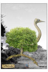 © Si la nature nous contait